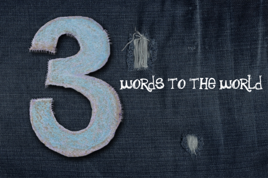 three words to the world cover copy